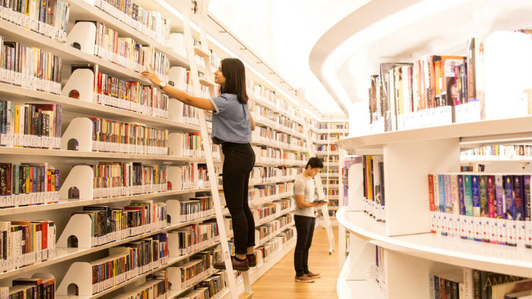 Indulge in a book at the library