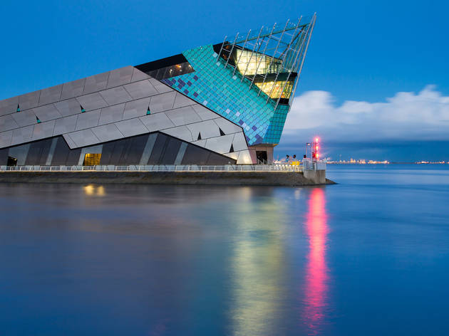 The 13 best things to do in Hull