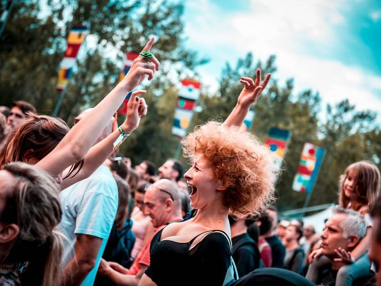 Party at INmusic festival
