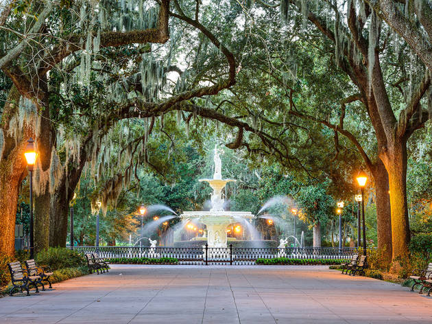 The ultimate guide to Savannah