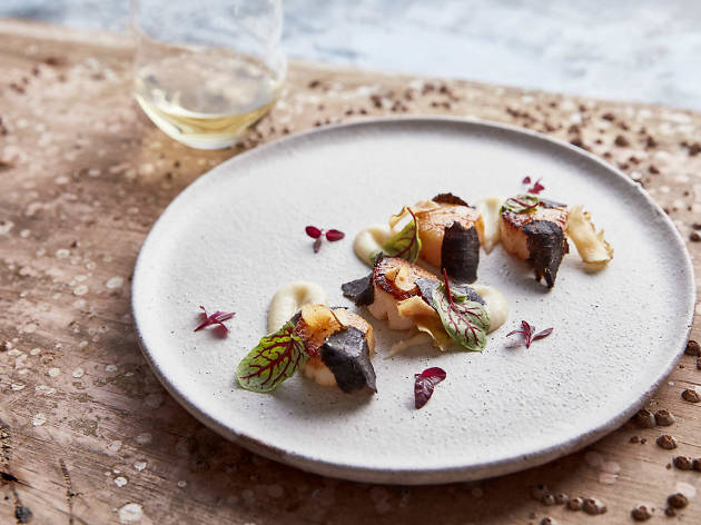 Seared scallops with truffle at Balla