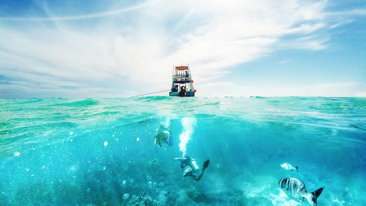 Scuba divers underwater and fishing tour boat in Cozumel