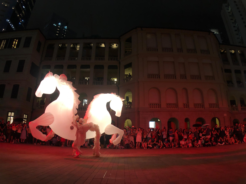 Tai Kwun horses