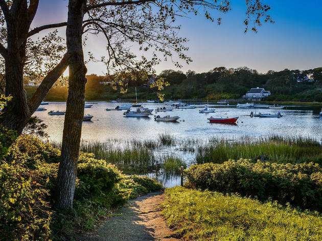 The 12 best things to do in Cape Cod