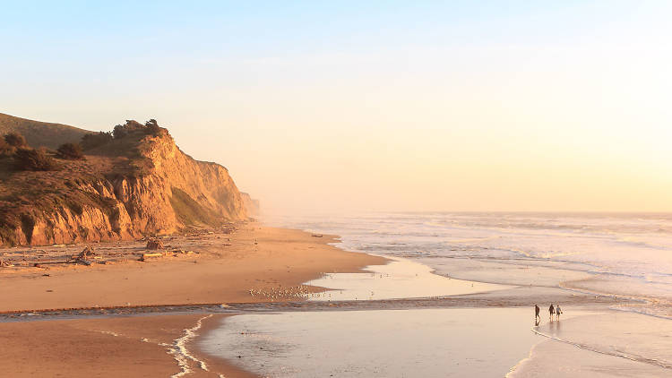 The ultimate guide to Half Moon Bay