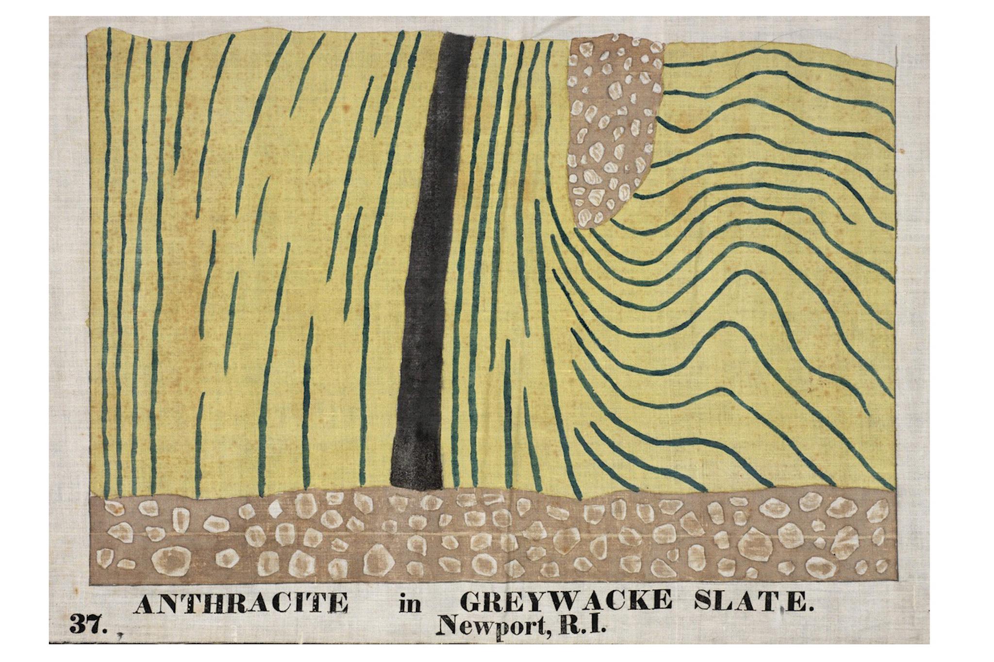 Orra White Hitchcock, Anthracite In Greywacke Slate. Newport, R.I.