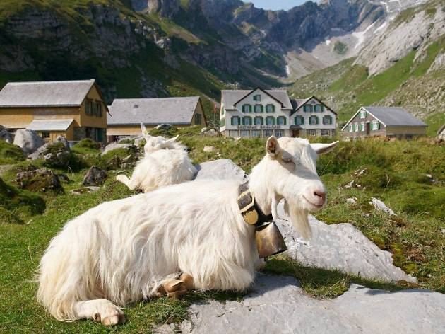 Berggasthaus Meglisalp, Weissbad, for Swiss Staycation campaign