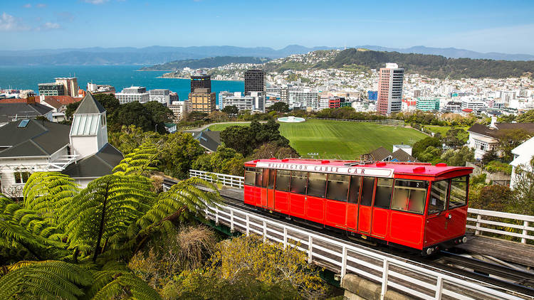 The ultimate guide to Wellington