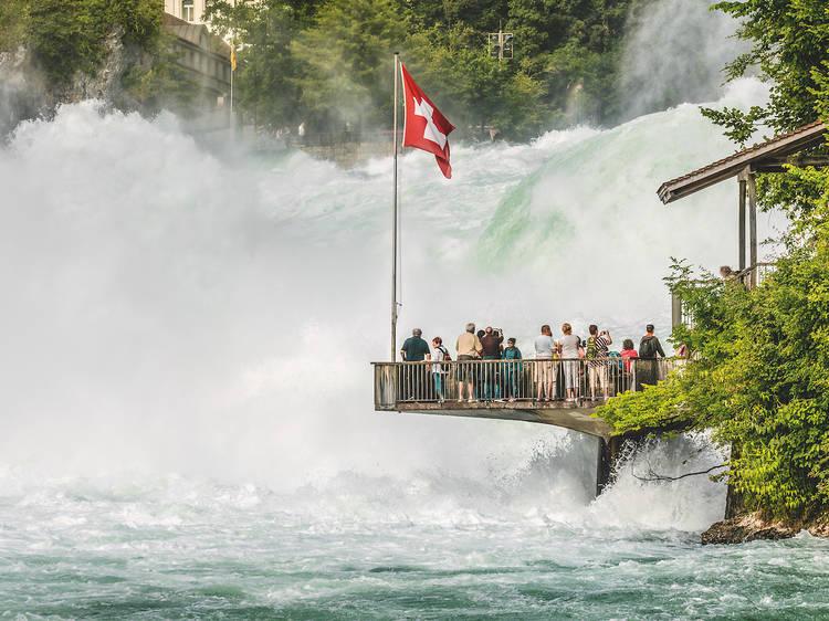Aller voir les chutes du Rhin, les plus grandes chutes d'eau d'Europe