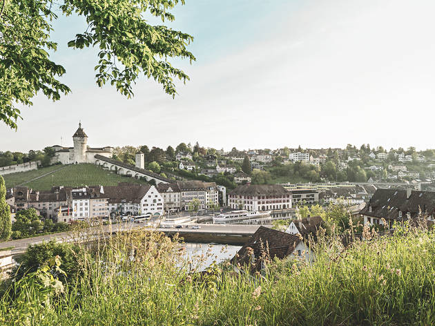Schaffhausen, Panorama
