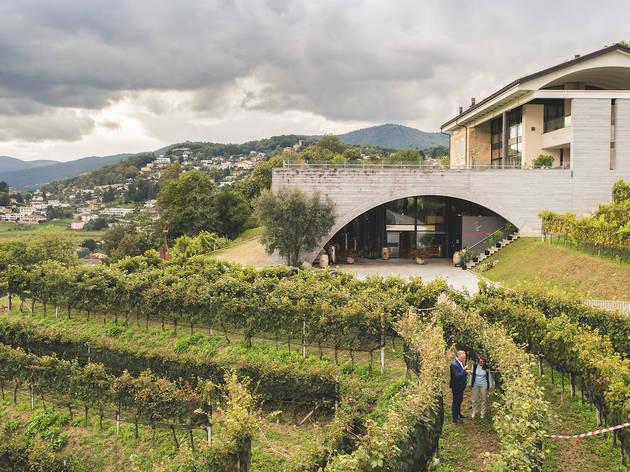Lugano, Dany Stauffacher