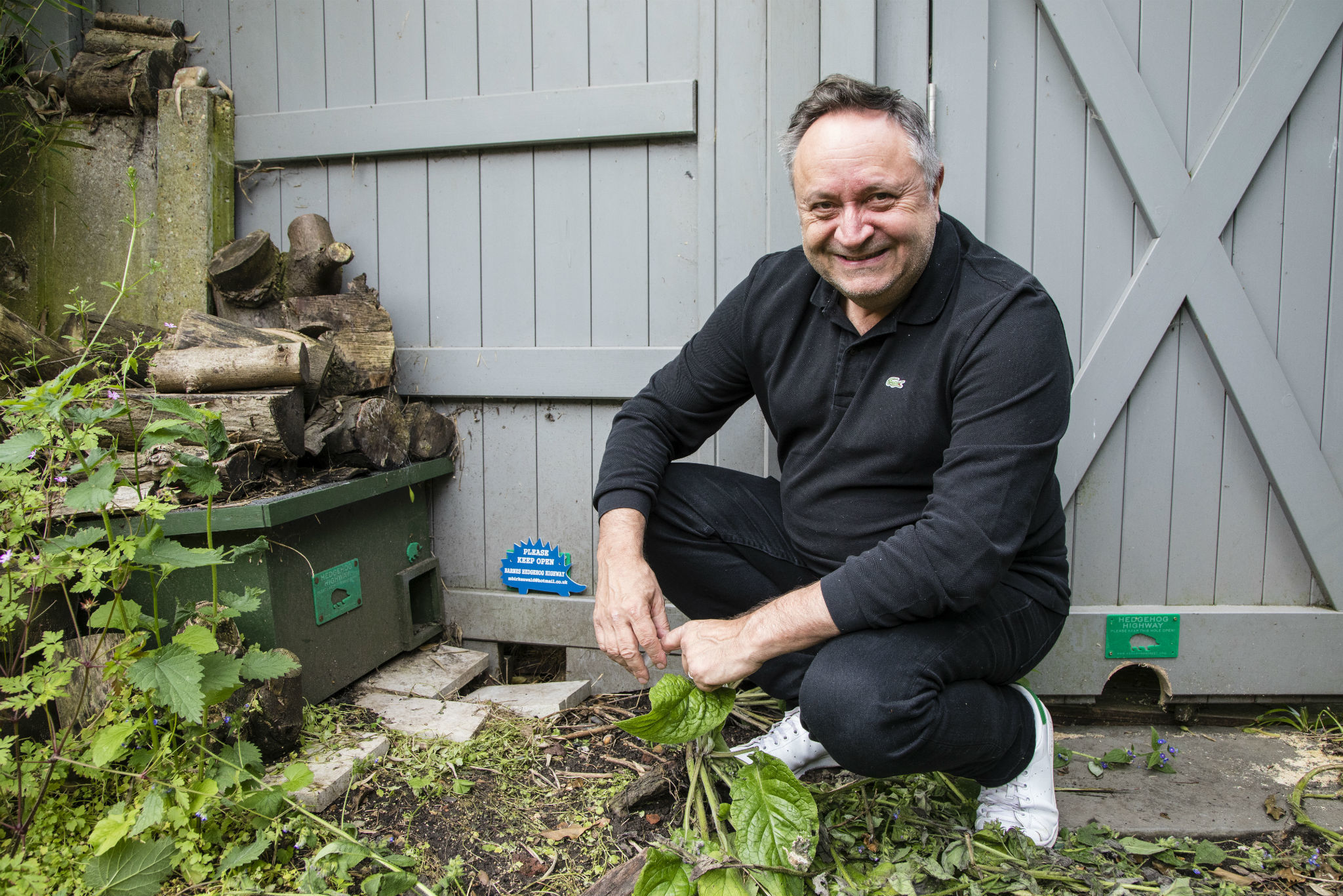 Meet the man saving London's hedgehogs one hole at a time