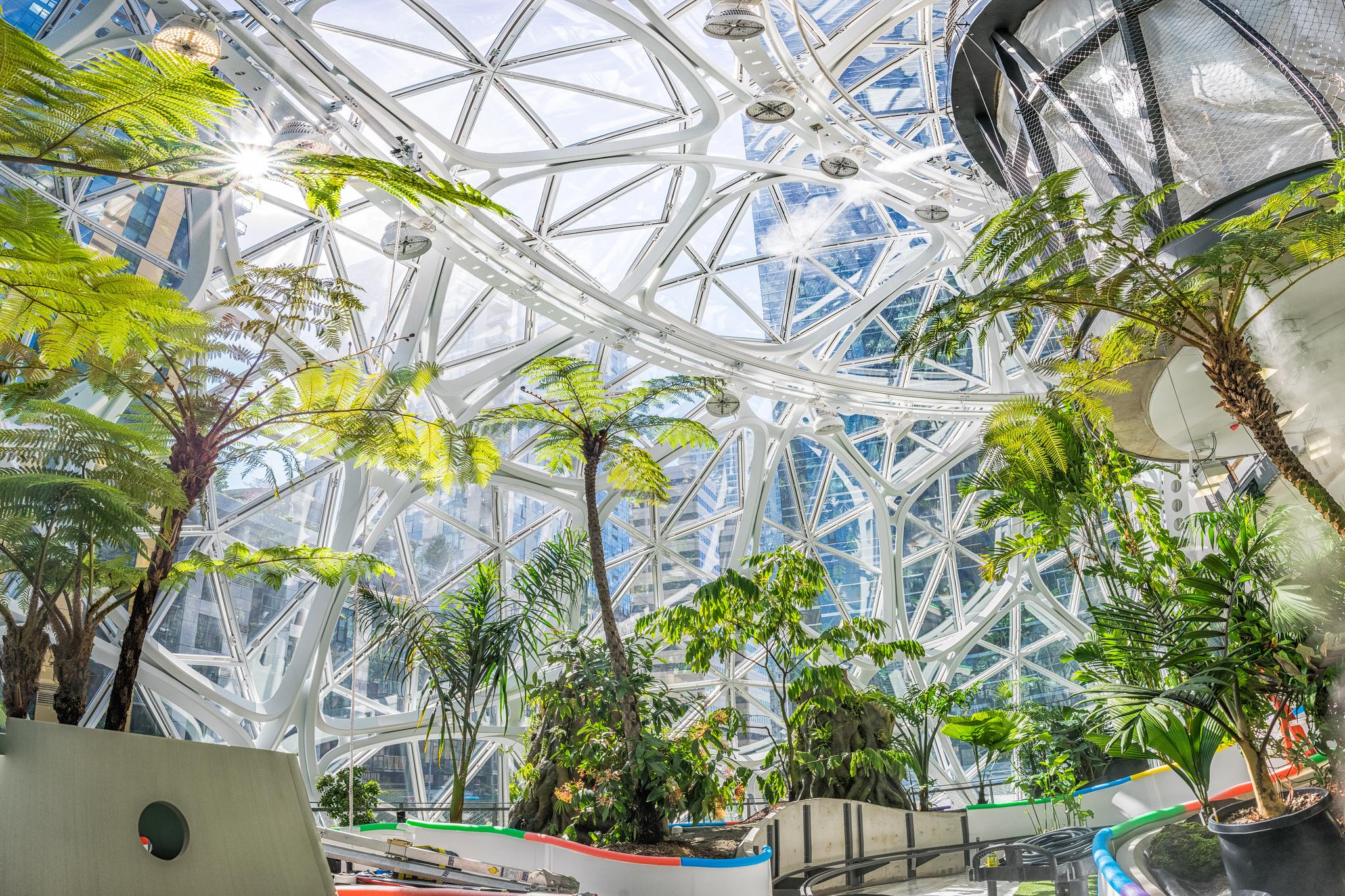 The Spheres at Amazon