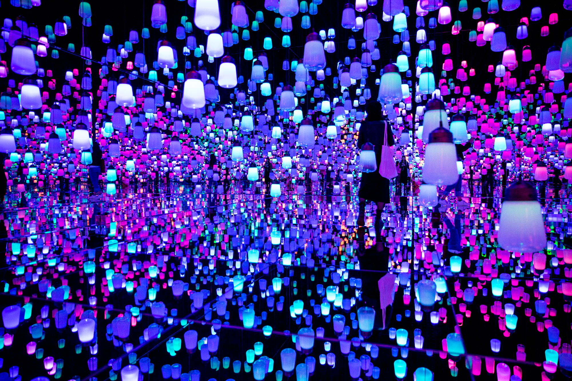 Guide to the Mori Building Digital Art Museum Epson teamLab Borderless