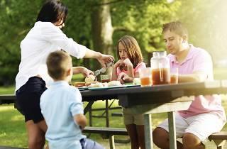 Família de pícnic