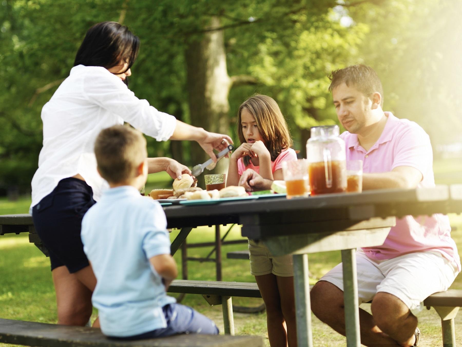 Un pícnic amb bones vistes