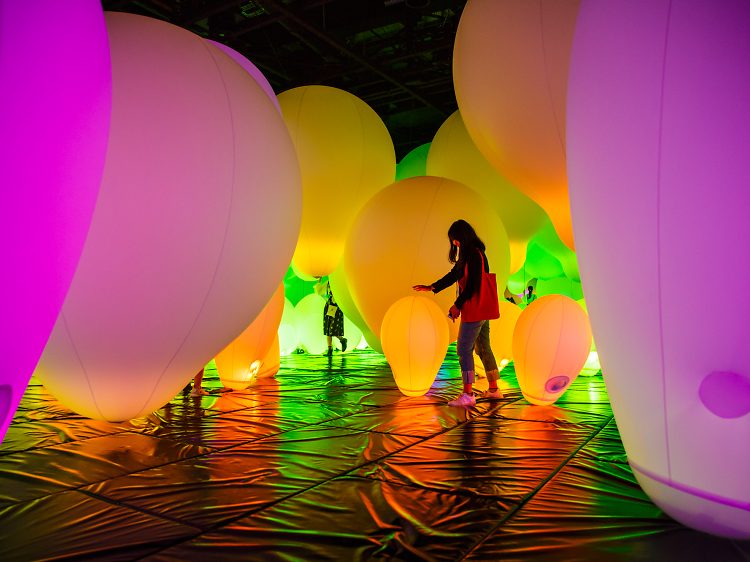 Enter a new dimension at teamLab Borderless digital art museum