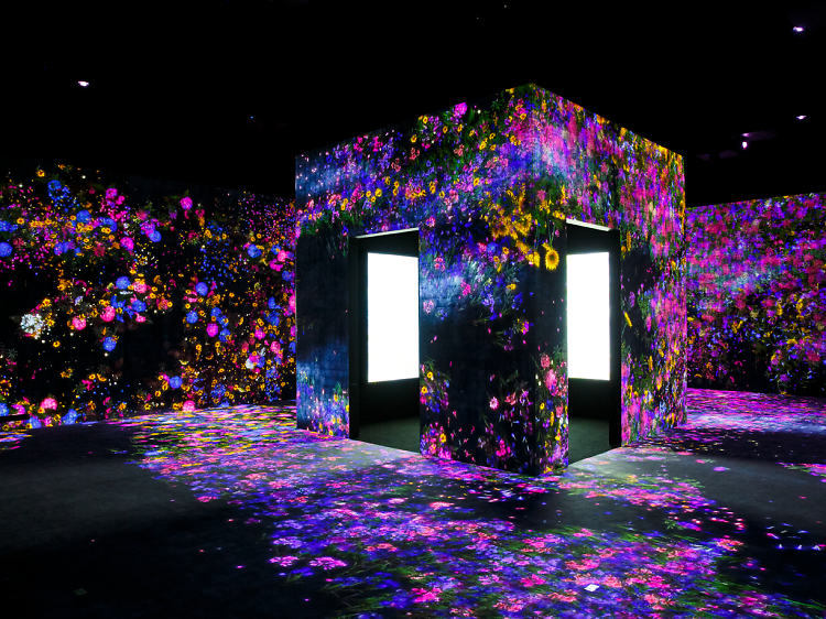 Flower Forest: Lost, Immersed and Reborn