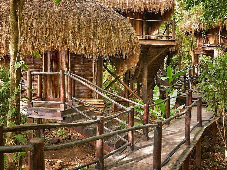 Relax with a massage in the treetops
