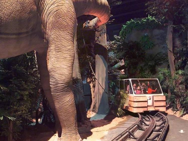 Seguint la pista dels dinosaures a Terol