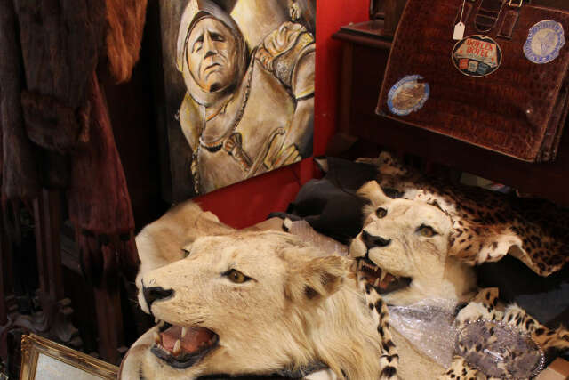 Discover Antiques, Long Street Antique Arcade