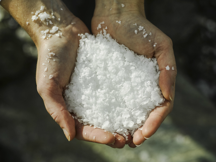 Sample world-beating salt