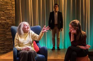 Marjorie Prime Ensemble Theatre 2018 photo credit: Lisa Tomasetti