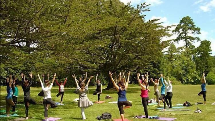 Vinyasa Yoga en Parque Juan Carlos I