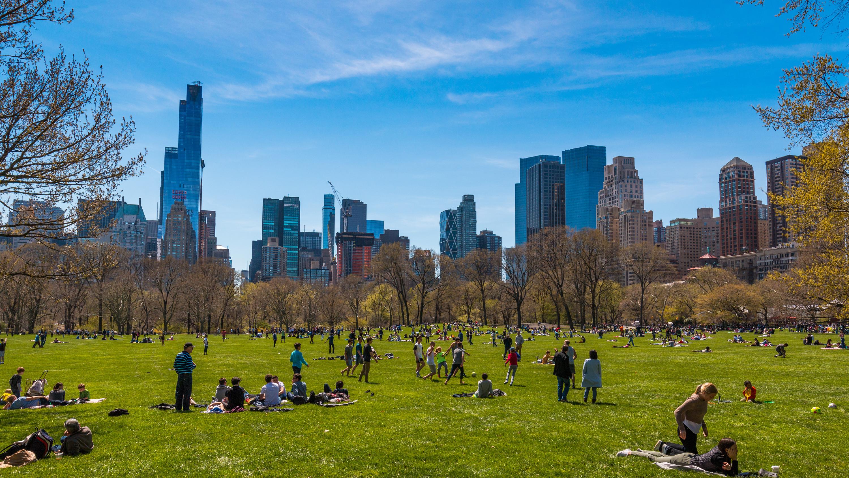 Summer activities for kids in NYC
