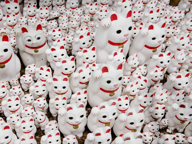 Top places to see and buy maneki-neko in Tokyo