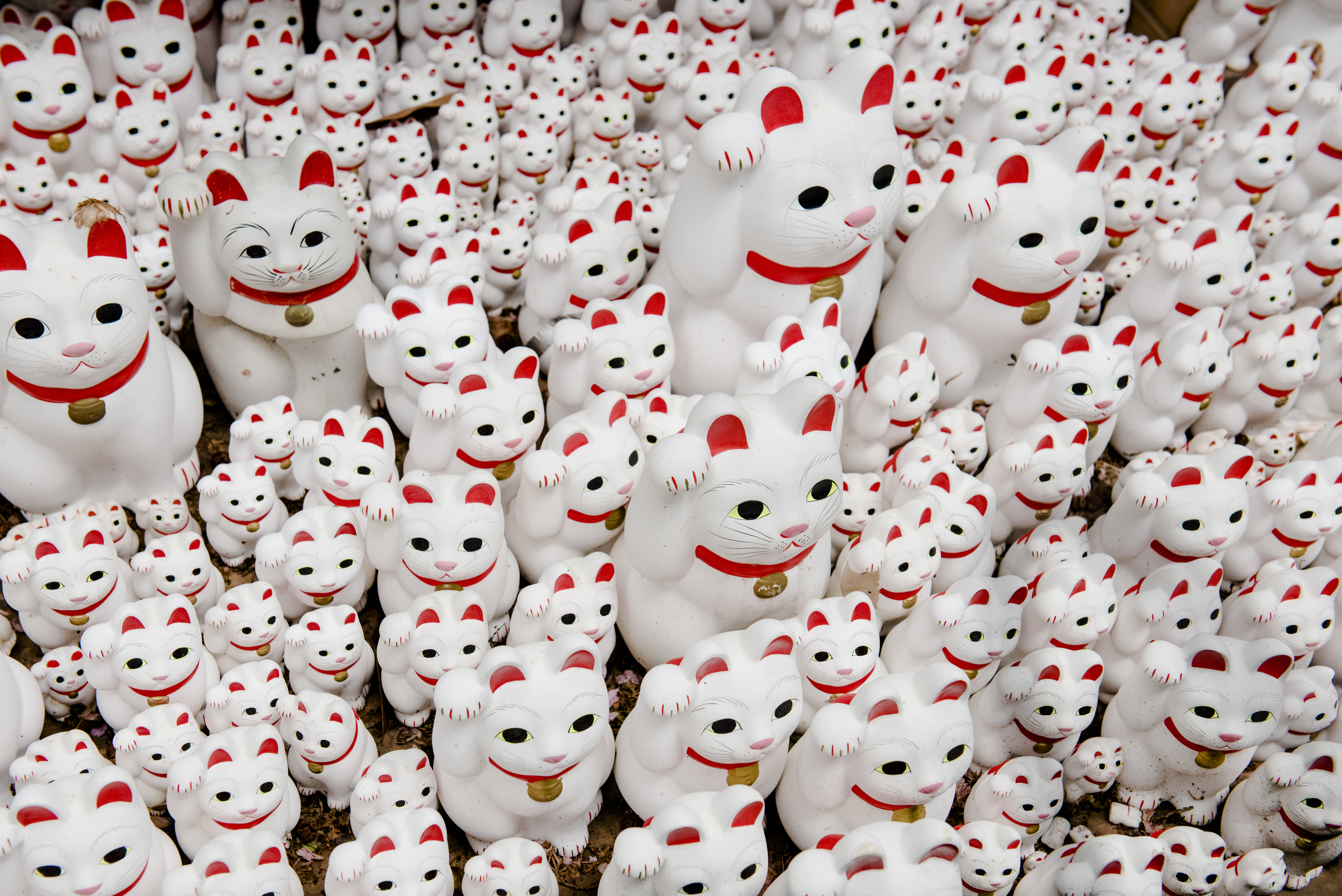 Top places to see and buy maneki-neko in Tokyo