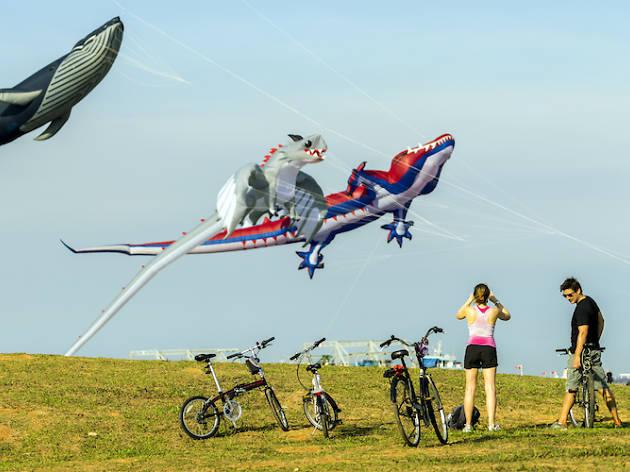 Kite flying East Coast Park