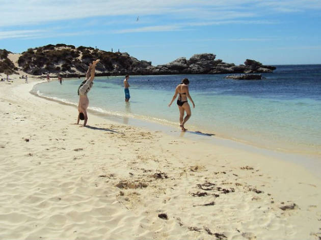 Fays Bay, Perth