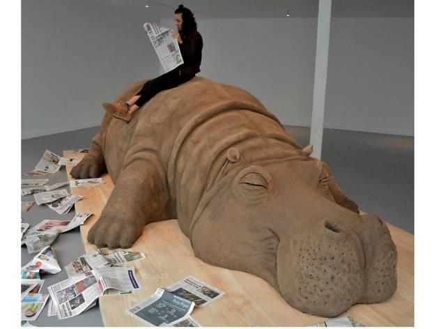 Hope Hippo, un hipopótamo en el Carrillo Gil