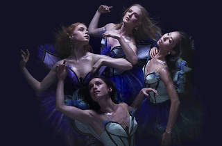 A Midsummer Night's Dream Queensland Ballet 2018 photo supplied credit: Justin Ridler