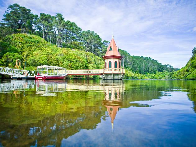 View of reservoir at Zealandia, Wellington