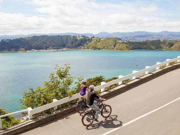 Two people cycling up hill in Wellington