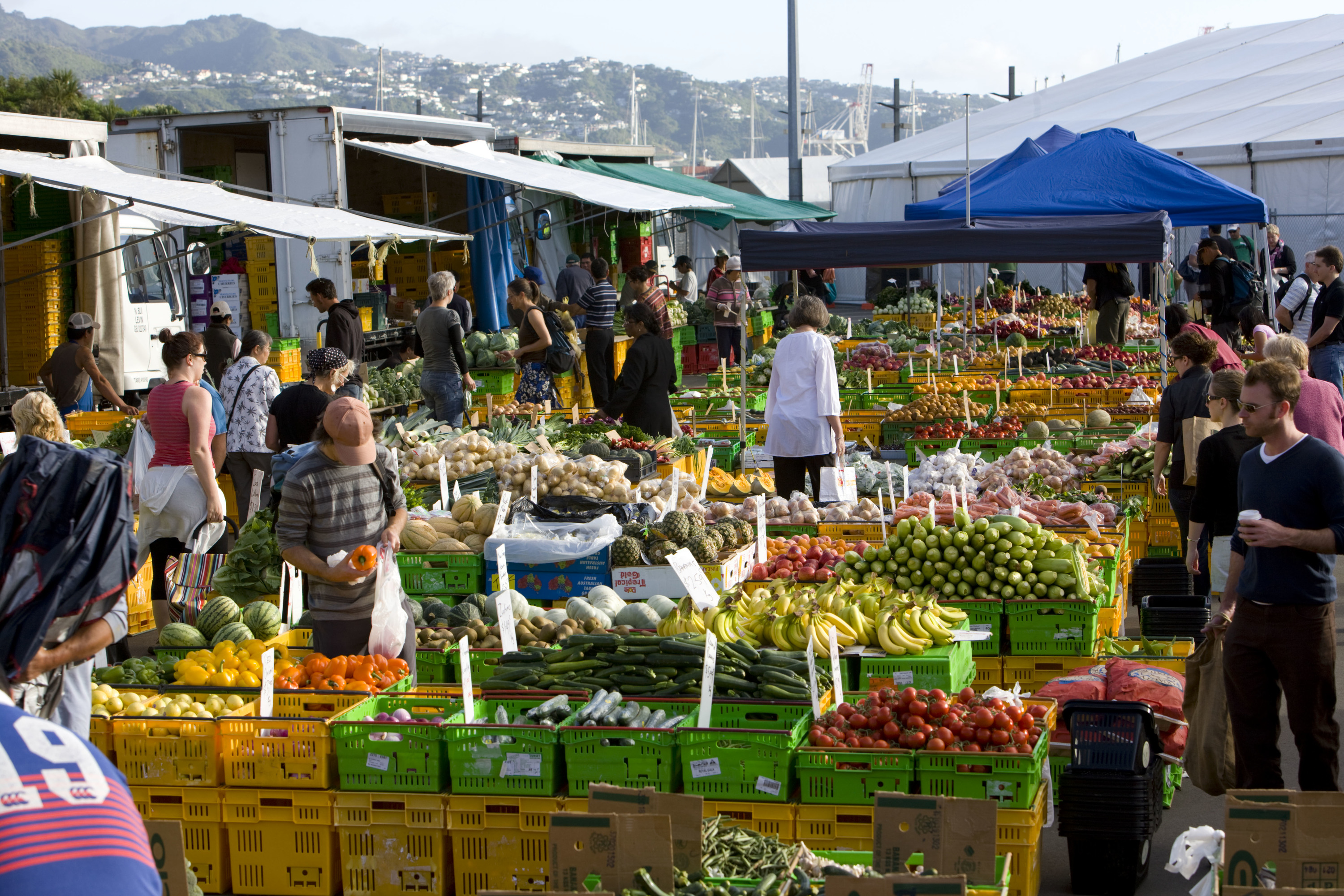 People shopping at the market