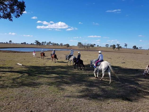 People horse riding at Sydney Horse Riding Centre