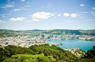 View of Wellington from Mount Victoria, New Zealand
