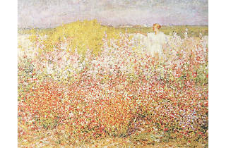 (John Russell 'Mrs Russell among the flowers in the garden of Goulphar, Belle-Île' 1907)