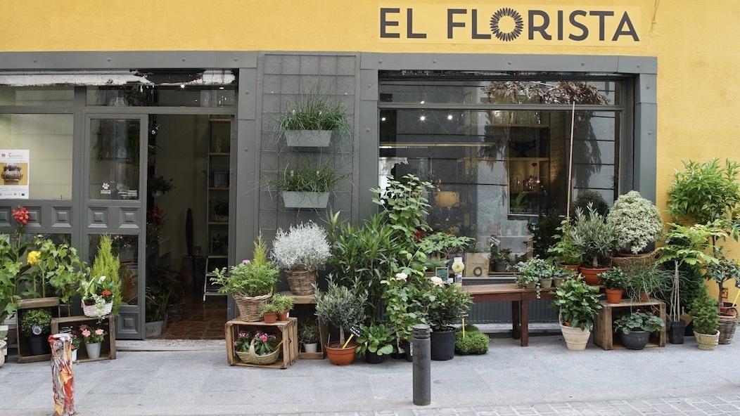 El Florista floristeria