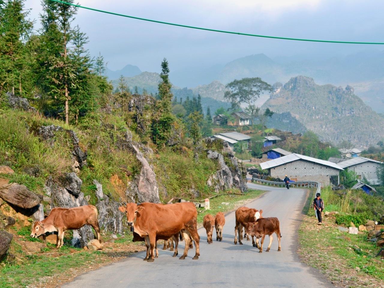 Meo Vac Village