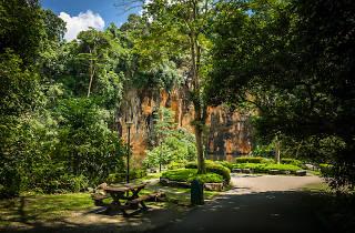 Bukit Batok Nature Park hiking trails