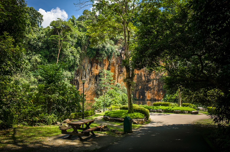 Bukit Batok Nature Park hiking trails
