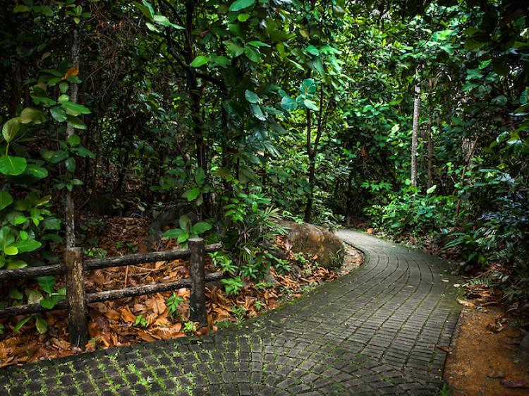 Bukit Timah and Bukit Batok