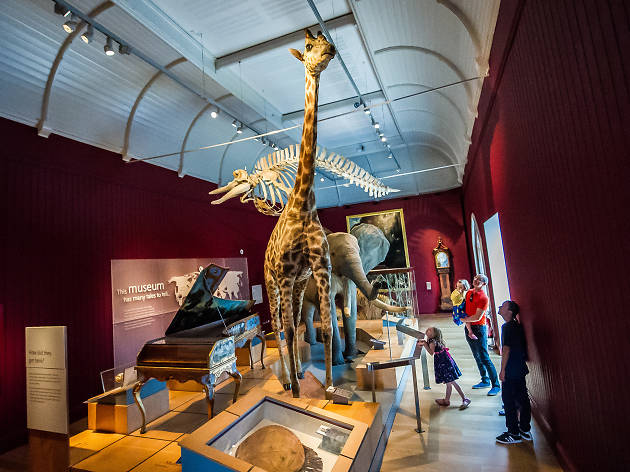 Royal Albert Memorial Museum & Art Gallery, Exeter, Devon