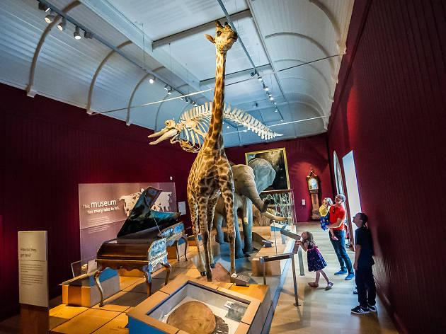 Royal Albert Memorial Museum & Art Gallery, Exeter, Devon