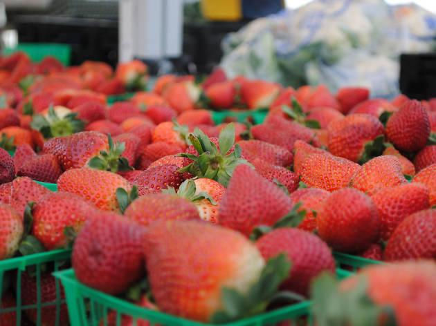 Phillippi Farmhouse Market