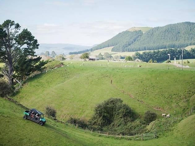 Agrodome, Rotorua